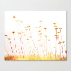 Beach Flora Canvas Print