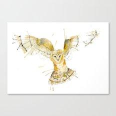 My Barn Owl Canvas Print