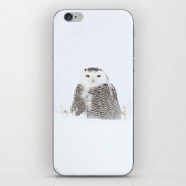 White on white iPhone Skin
