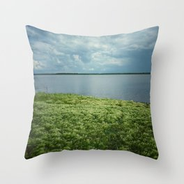 Summer on a village 2 Throw Pillow