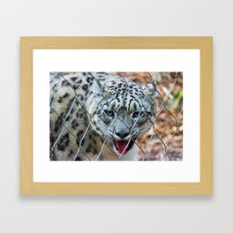 Chipper Framed Art Print