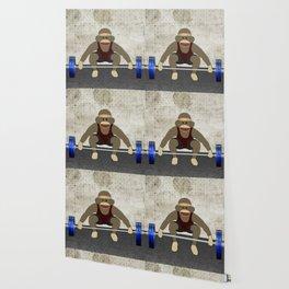 Sock Monkey Bodybuilder Wallpaper