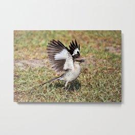 Wing Flash Metal Print