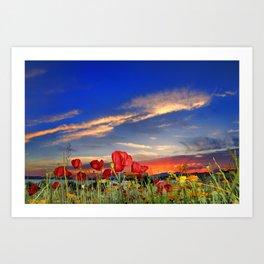 Poppies at sunset Art Print