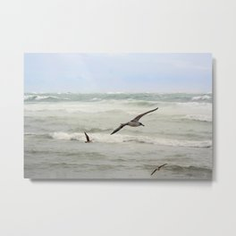 Seagulls flying over rough sea Metal Print