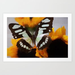 Summer Butterfly Art Print