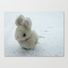 Bob (the bunny) Canvas Print