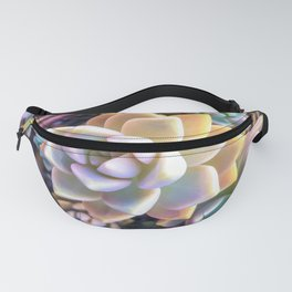 green and pink succulent plant garden background Fanny Pack