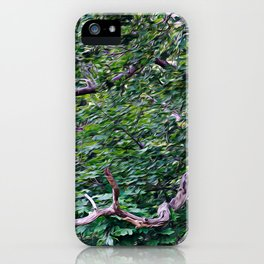An Old Branch iPhone Case