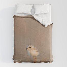 Chick/Baby Bird Comforters