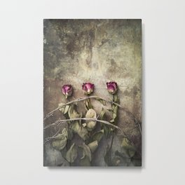 Three dried roses and barbed wire Metal Print