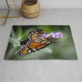 Monarch Danaus Plexippus Butterfly Rug