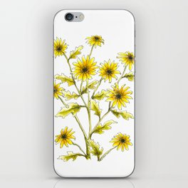 Yellow black eyed Susans painting iPhone Skin