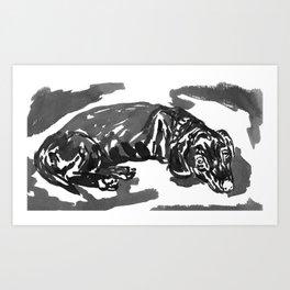 Dacshund dosing -1 Art Print