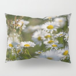 Daisies meadow in the summer Pillow Sham