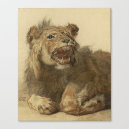 Cornelis Saftleven - A Lion Snarling Canvas Print