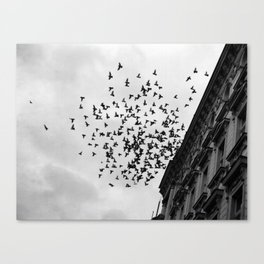 Chaos Theory: Applied Canvas Print