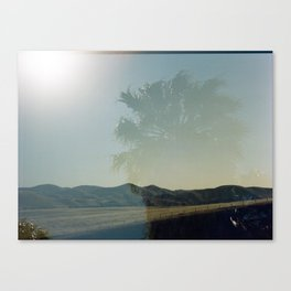 Double: California Canvas Print