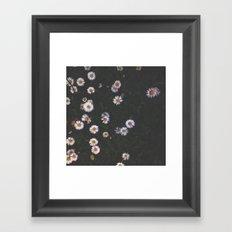 Field of daisies Framed Art Print