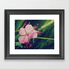 Star Flower Framed Art Print