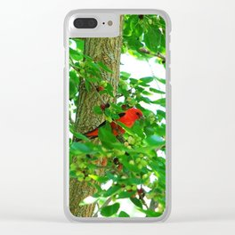 Scarlet Tanager Bird Clear iPhone Case