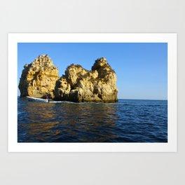 Water Rock  Art Print