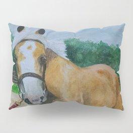 One Little Thing... Pillow Sham
