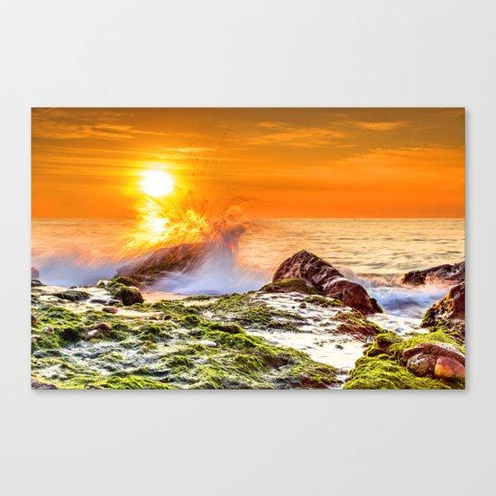Beauty nature XIV Canvas Print