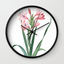 HIGHEST QUALITY botanical poster of Gladiolus Wall Clock