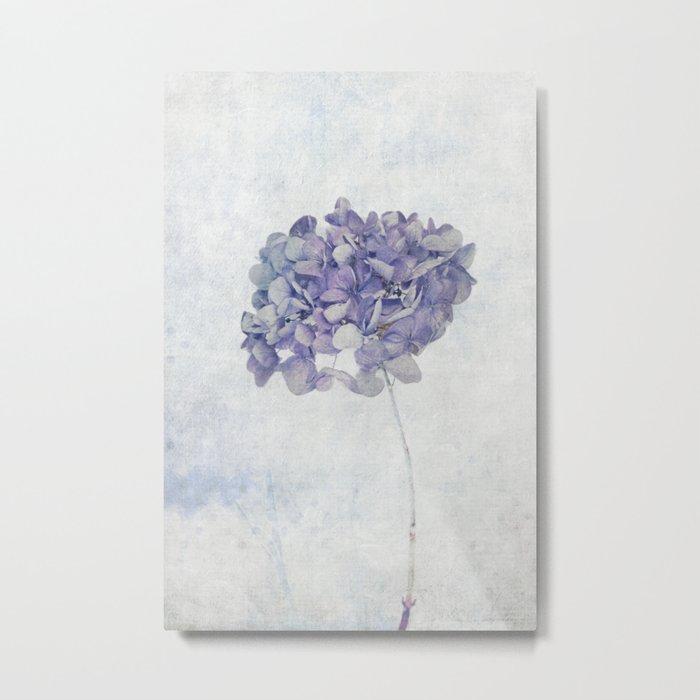 Blue Vintage Hydrangea Metal Print