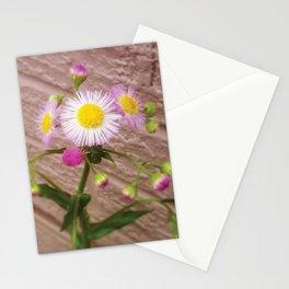 Urban Flower Stationery Cards