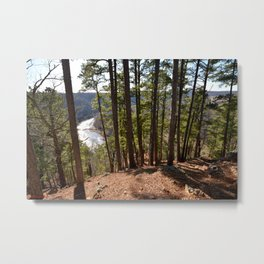 Climbing Up Sparrowhawk Mountain above the Illinois River, No. 7 of 8 Metal Print