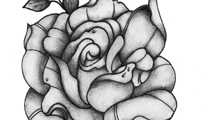 Black and Grey Rose Pillow Sham