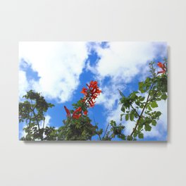 Flowers and Cloud Metal Print