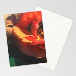 Rose + Stationery Cards