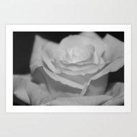 Rose - B&W Art Print