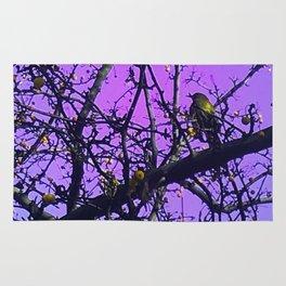 Blackbird On Purple Background Rug
