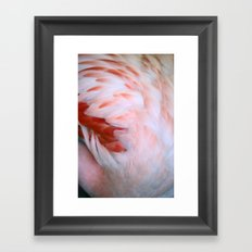 Flamingo #5 Framed Art Print