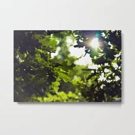 Dreamy forest - Landscape Photography #society6 Metal Print