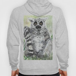 Ring-Tailed Lemur - cute animal, nature, lemur, eyeroll, zero given, not impressed, animals Hoody