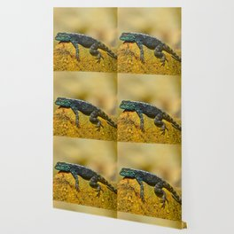 Eidechse Wallpaper