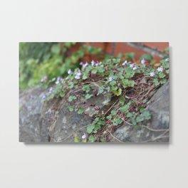 Creeping Flowers Metal Print