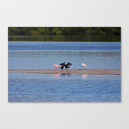The General Canvas Print
