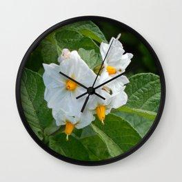 Potato Plant Flowers Wall Clock