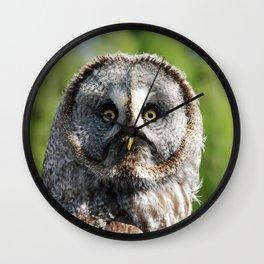 Owl_20180219_by_JAMFoto Wall Clock