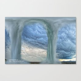 Sonoran Desert Watergate Canvas Print