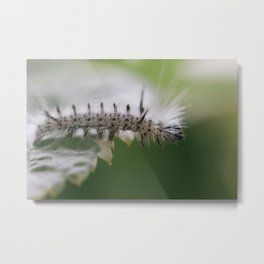 Edge Walk Metal Print