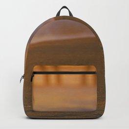 Sunset Seagull Backpack