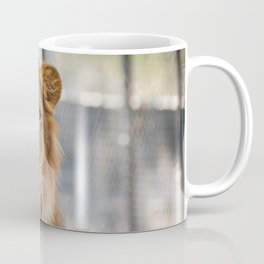 Lambert the Lion All Grown Up Coffee Mug