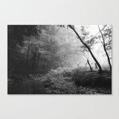 A Quiet Morning Canvas Print